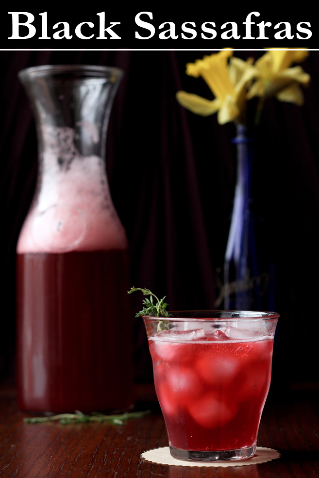 Blackberry Shrub Drinking Vinegar